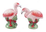 Tropical Flamingo Salt and Pepper Shaker Set