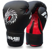 Farabi Dragon Boxing , MMA , Muay Thai , Kickboxing Fitness Punching Gloves Bag Mitts