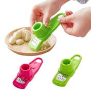 FTXJ Multifunction Garlic Presses Slicer Cutter Mincer Crusher Kitchen Tool