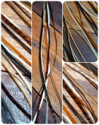 Pack of 6 Feather Extensions Long Natural