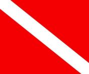Invincible BR58110 Dive Flag 50cm x 60cm