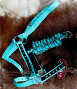 Horse Nylon HALTER Lead Rope Noseband Turquoise Teal Bling Tack Rodeo 606122