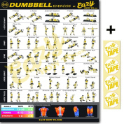 Eazy How To Dumbbell Exercise Workout Poster BIG 50cm x 70cm NOW INCREASED PICTURE SIZE Train Endurance, Tone, Build Strength & Muscle Home Gym Chart