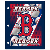 MLB Boston Red Sox 3D Portfolio