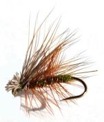Flies Direct Elk Hare Caddis Olive Assortment Trout Fishing Flies