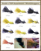 Top Selling Flies - Guide's TOP Assortment - WOOLLY BUGGERS