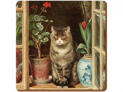 Creative Tops Basking Cat Premium Cork-Backed Coasters, Wood, Multi-Colour, 6-Piece