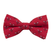 Eagles Wings EAG-9972 Chicago Bulls Repeat NBA Bow Tie