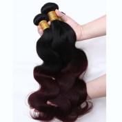 REINE Ombre Malaysian Hair Burgundy Body Wave Red Wine Malaysian Virgin Hair Bundles 4pcs T1B 99J Two Tone Human Hair