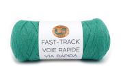 Lion Brand Yarn 521-130 Fast Track Yarn Fast Track, Go Kart Green