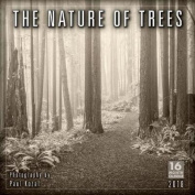 Nature of Trees, the Photography by Paul Kozal 2018 Wall Calendar