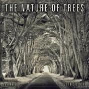 Nature of Trees 2018 Mini Wall Calendar