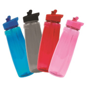 1x Coloured 750ml Sports Bottle with Straw- Colour at Random