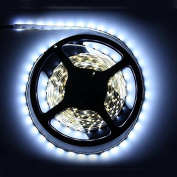 5M White 3528 SMD LED Strip Light Non-Waterproof 12V DC 300 LED by Hand Tools