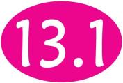 13.1 Oval Car Magnet - Hot Pink