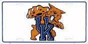 University of Kentucky Tin Sign 30cm x 15cm