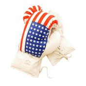 Defender USA 470ml Boxing Gloves