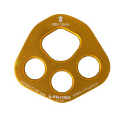 Fusion Little Foot Rigging Plate - Gold