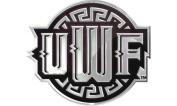 West Florida Argonauts SD81442 Premium Raised Metal Chrome Auto Emblem University of