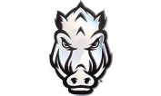 Arkansas Razorbacks HOG FACE SD76299 Premium Raised Metal Chrome Auto Emblem University of [Special Edition]