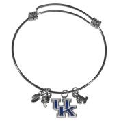 NCAA Kentucky Wildcats Womens Charm Bangle Bracelet