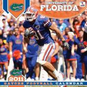 Florida 2011 Wall Calendar