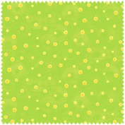 Hoopla and Everyday Fun by Jennifer Heynen from In the Beginning Fabrics100% Cotton Quilt Fabric 5JHQ3