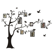 Kemilove 3D DIY Photo Frame Tree PVC Wall Decals Adhesive Wall Stickers Mural Art Home Decor