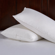 Home Elements White Down and Feather Fibre Pillow, 100% Cotton Fabric, King Size, Set of Two, White
