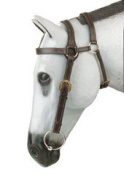 Down Under Extended Head Bridle