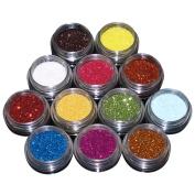 EZI 12 Colours Nail Art Acrylic Glitter Powder Dust Tips Decoration Tool Set # 5501460 by EZI