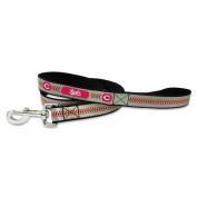 MLB Cincinnati Reds Baseball Pet Leash, Reflective