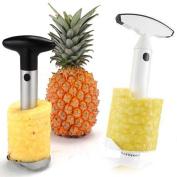 Easy Fruit Pineapple Slicer Corer Peeler Parer Cutter