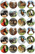 24 Horses Edible Wafer Paper Cup Cake Toppers