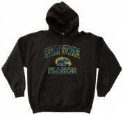 NCAA Kent State Golden Flashes 50/50 Blended 240ml Vintage Mascot Hooded Sweatshirt