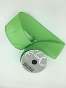 Celebrate IT- Ribbon Single Colour (Green) - ribbon 6.4cm x 7.6m