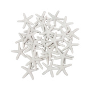 LJY 25 Pieces White Resin Pencil Finger Starfish for Wedding Decor, Home Decor and Craft Project, 5.8cm