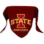 NCAA Iowa State Cyclones Pet Bandana