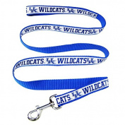 University of Kentucky Wildcats Nylon Ribbon Dog Leash