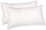 Sunflower DBP-22x32 Cotton Down Blended Hybrid Pillow, Set of 2, Queen