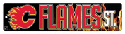 NHL Chicago Blackhawks High-Res Plastic Street Sign