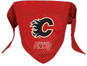 NHL Calgary Flames Pet Bandana