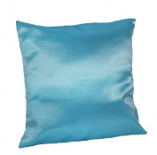 Cozymomo One Pair Blue Throw Pillow Cover Decorative Sofa Couch Cushion Cover Zipper 16 x 16 Inchs