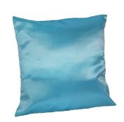 Cozymomo One Pair Blue Throw Pillow Cover Decorative Sofa Couch Cushion Cover Zipper 16 x 16 Inchs