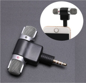 Wensltd Professional Mini Recorder Stereo Voice Digital Mic Microphone Portable For Smartphones PC