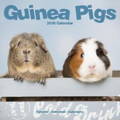 Guinea Pigs Calendar 2018