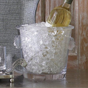 Luxe Lion Head Glass Ice Bucket | Cooler Wine Chiller Medallion