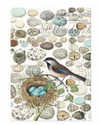 Michel Design Works Cotton Kitchen Dish Towel, Nest & Eggs