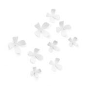 Umbra Wallflower, White