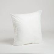 Foamily Premium Hypoallergenic Stuffer Pillow Insert Sham Square Form Polyester, 46cm L X 46cm W, Standard/White
